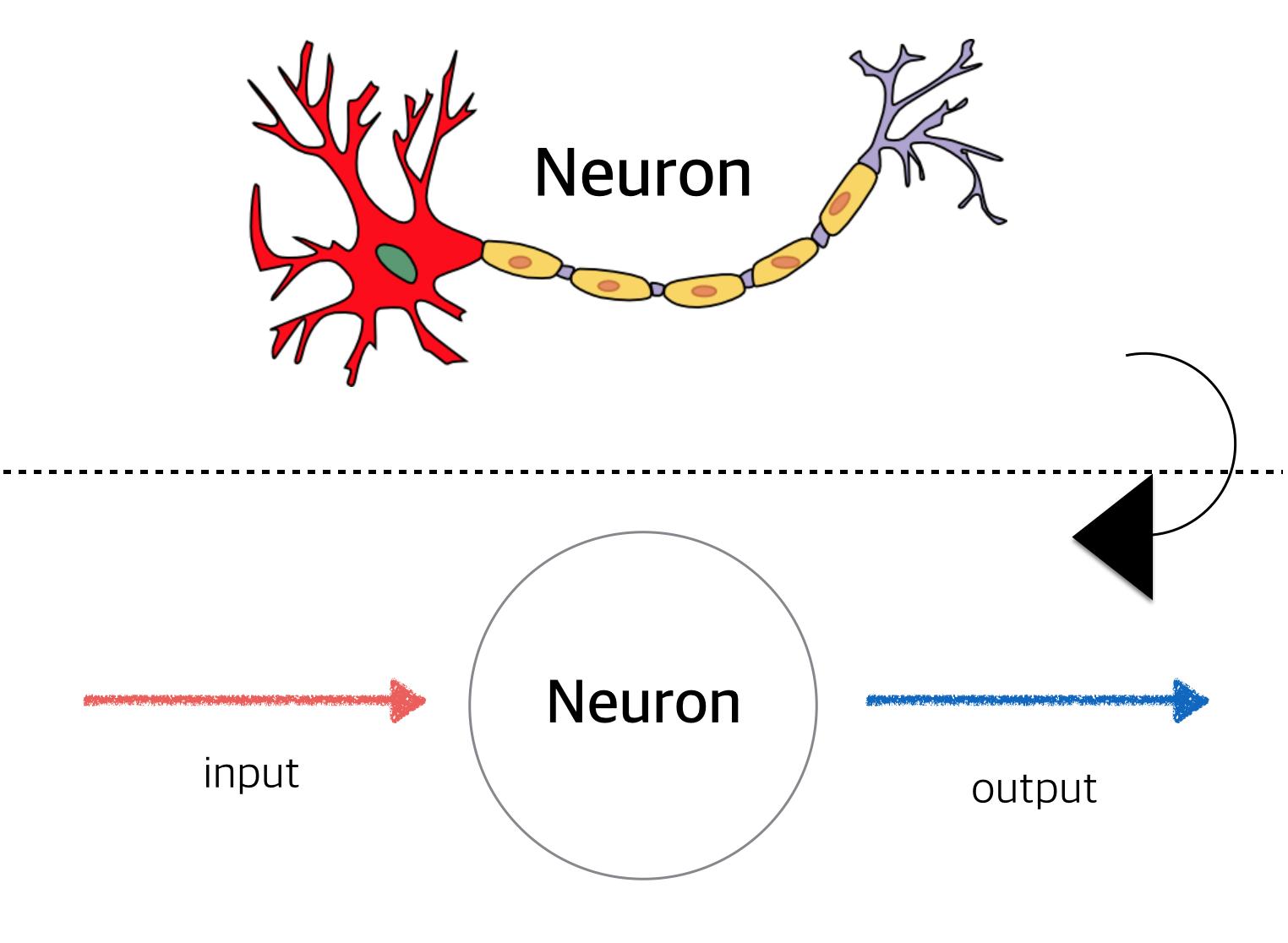 simpleneuron